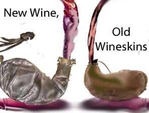 Image result for old wineskin