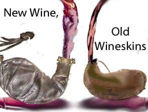 Image result for old wineskin