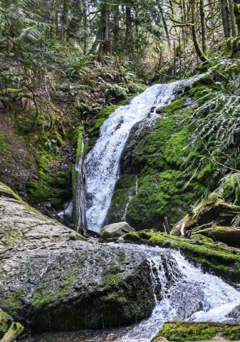 Coal Creek Falls Trail